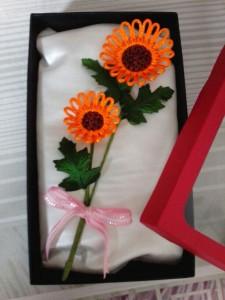 20130515 太陽花